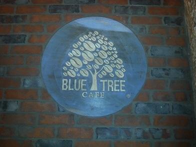 bluetree1.jpg