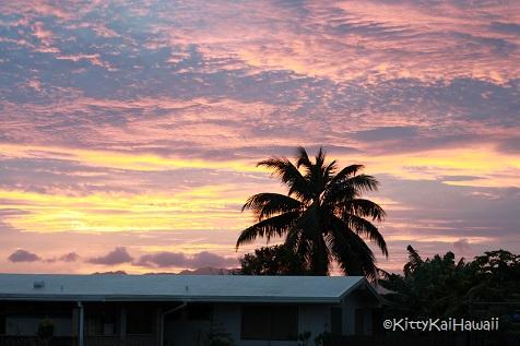 pink_sunset.jpg